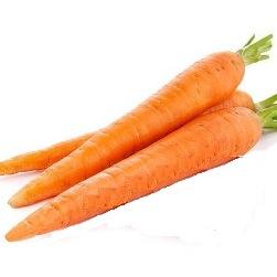 Καρότο